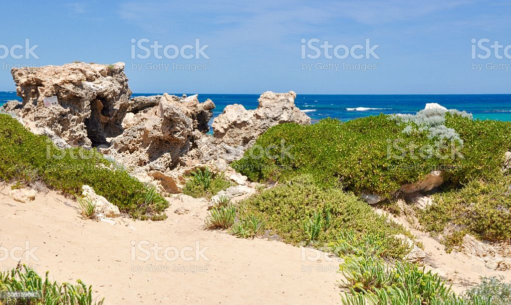 Dune Plants and Limestone Rock: Cape Peron stock photo