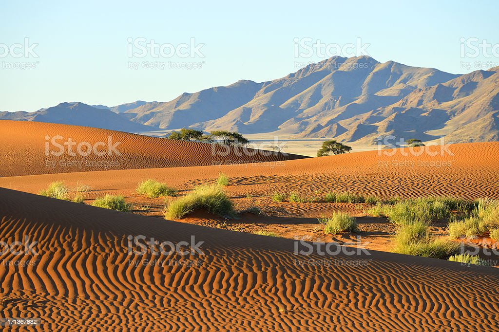 Dune riples in front of a mountain range stock photo