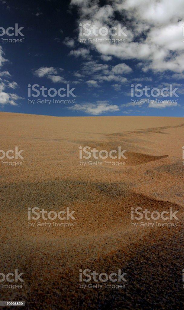 Dune tracks stock photo