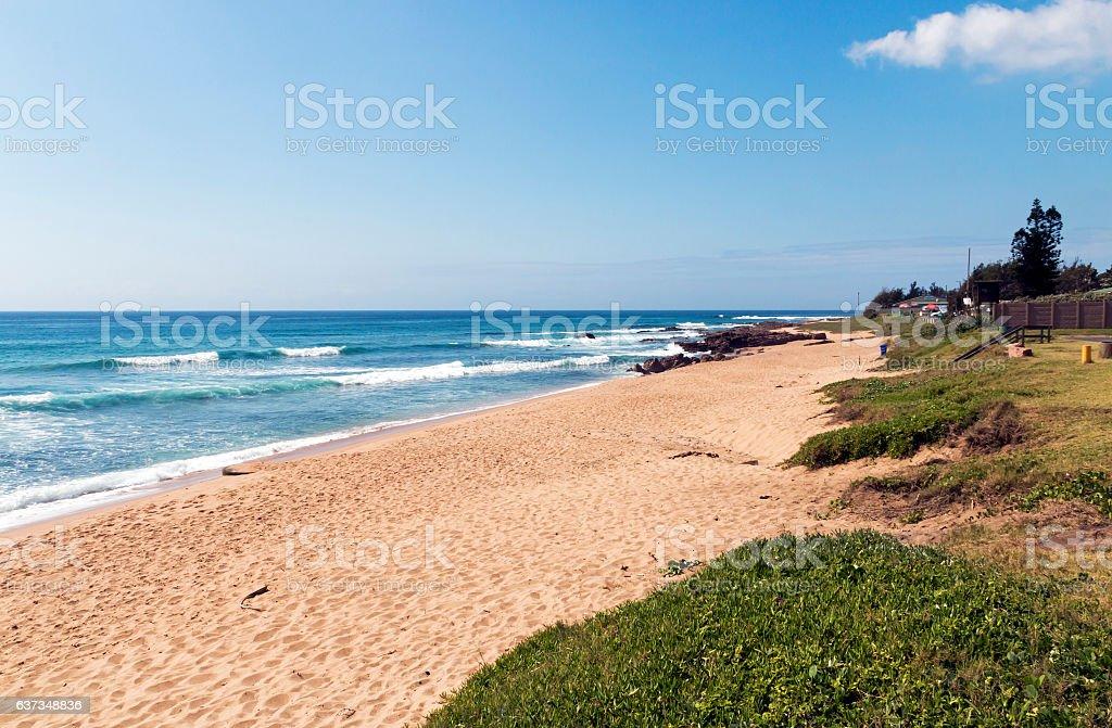 Dune Vegetation and Empty Beach Against Blue Ocean Skyline stock photo