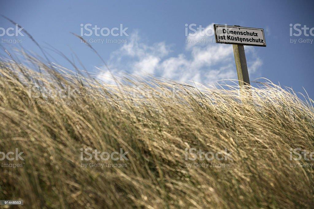 Dunes along the North Sea stock photo