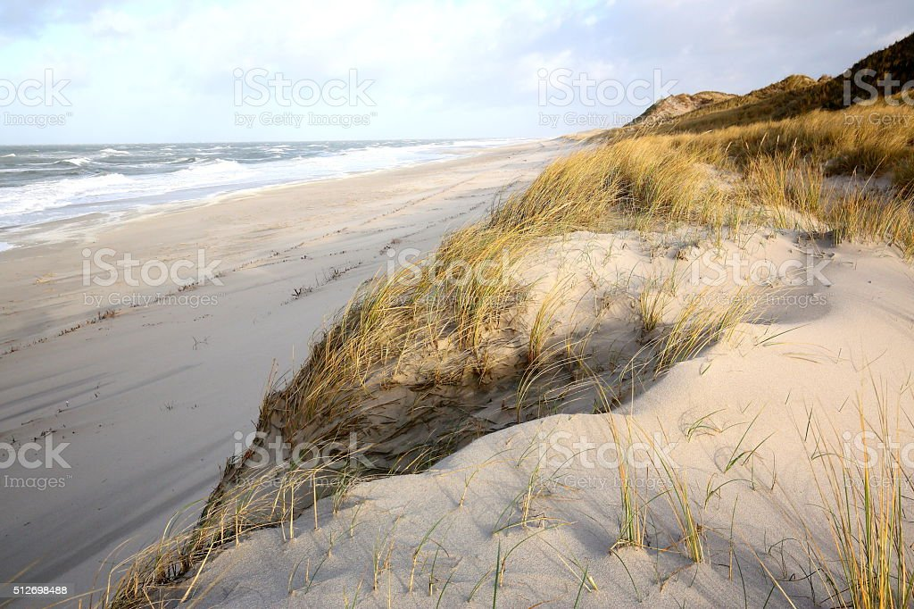 dunes and beach of Sylt stock photo