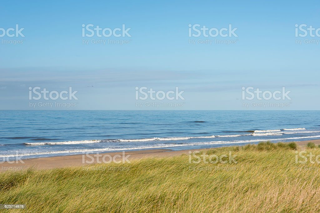 dunes and sea in holland stock photo