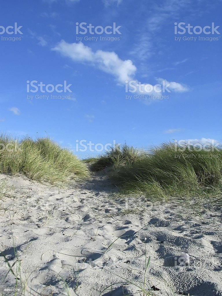 Dunes and sky on a beach royalty-free stock photo