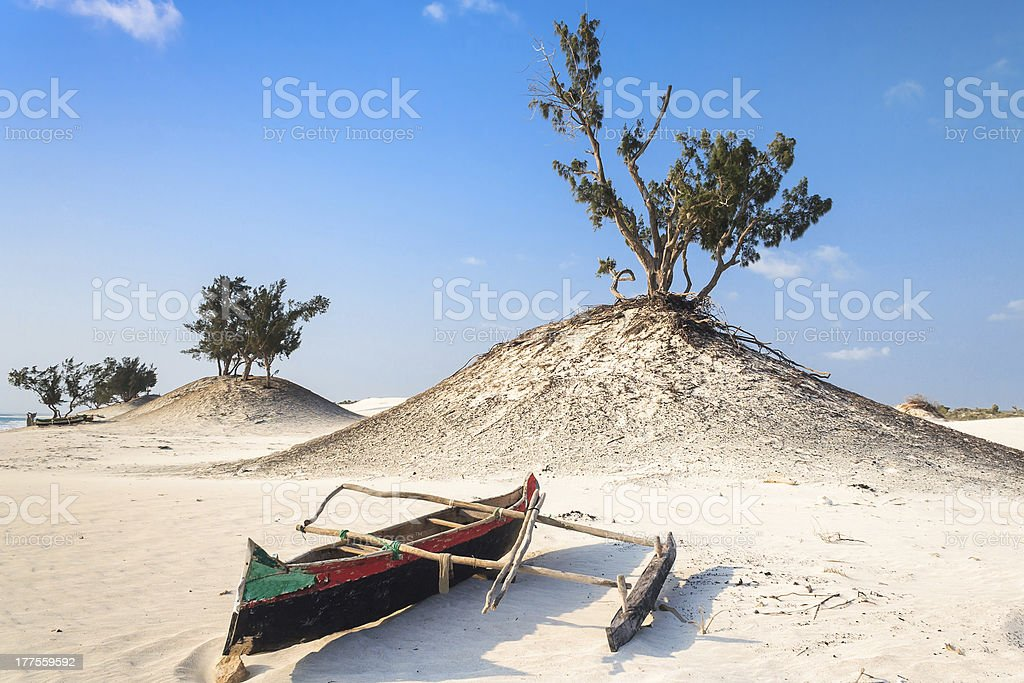 Dunes and wild beach royalty-free stock photo
