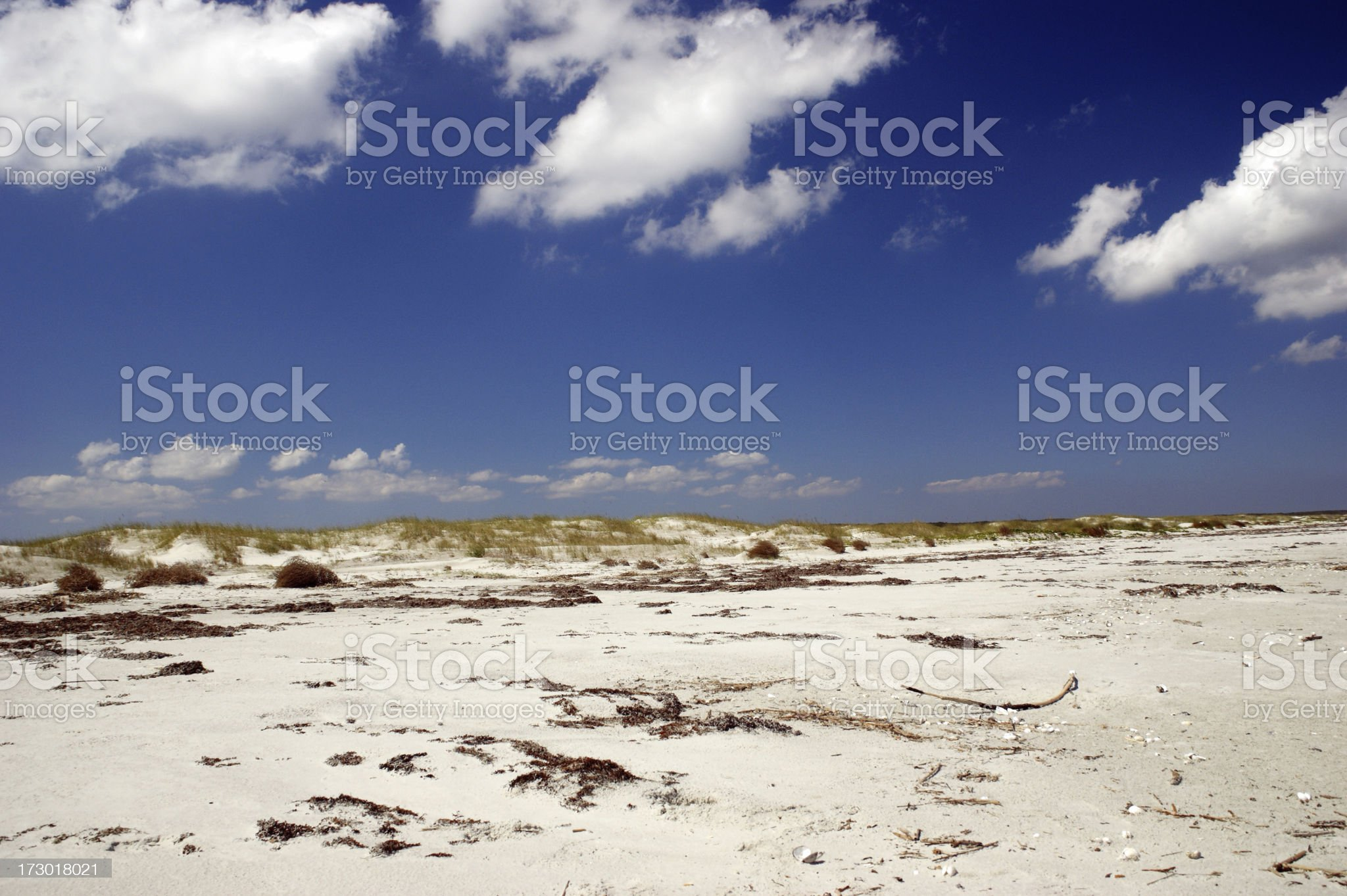Dunes at Cumberland Island Georgia royalty-free stock photo