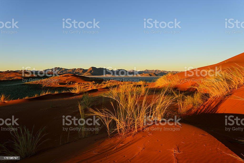 Dunes at sunset royalty-free stock photo