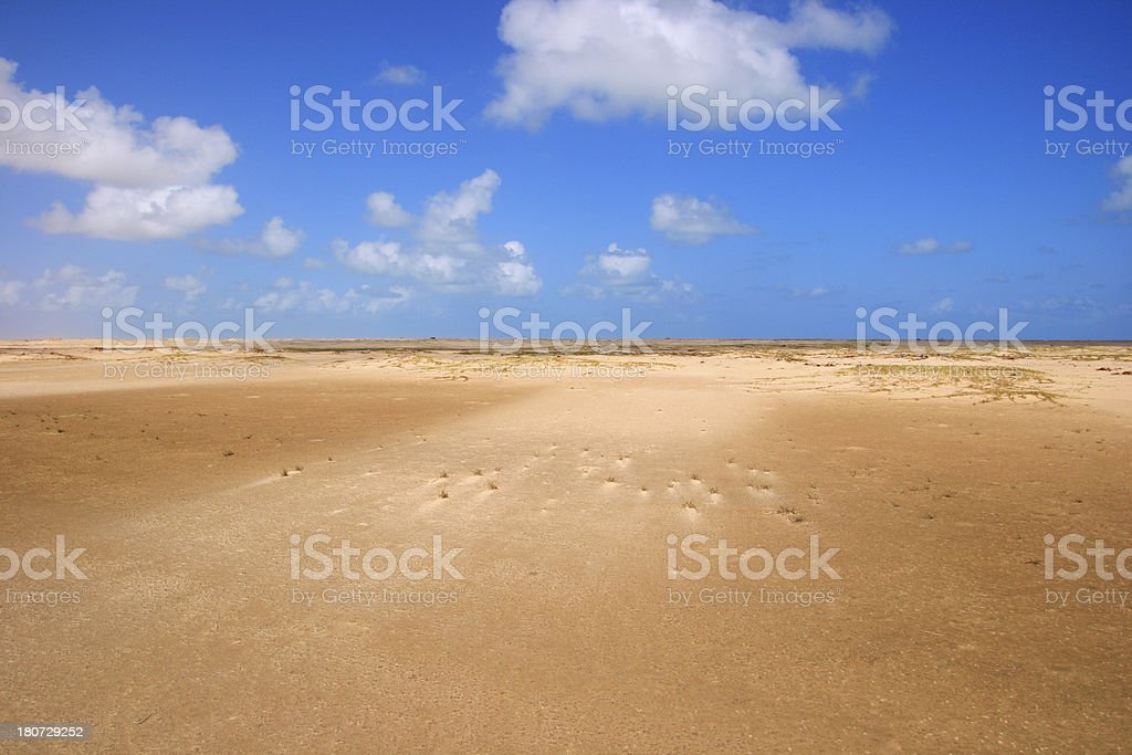 Dunes at the beach (Brazil) royalty-free stock photo