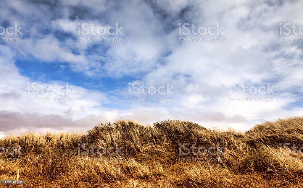 Dunes at the Danish North Sea coast on Fano royalty-free stock photo