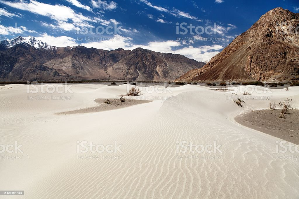 Dunes in Nubra Valley - Ladakh stock photo