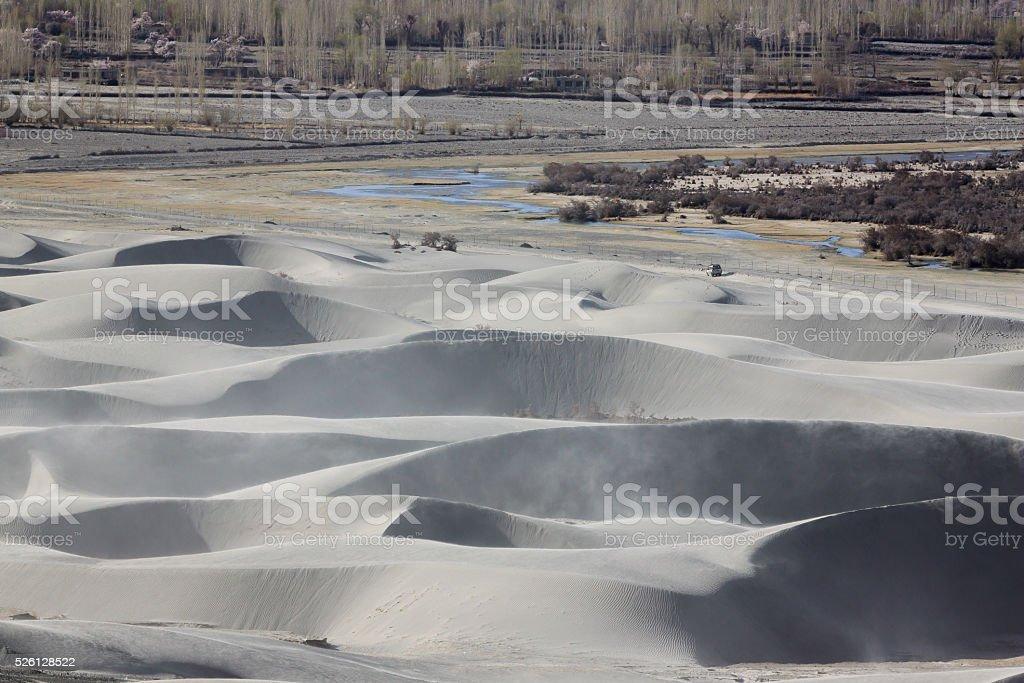 Dunes in Nubra Valley stock photo
