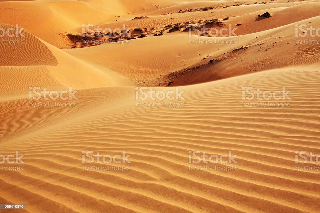 Dunes near Mui Ne. Vietnam stock photo
