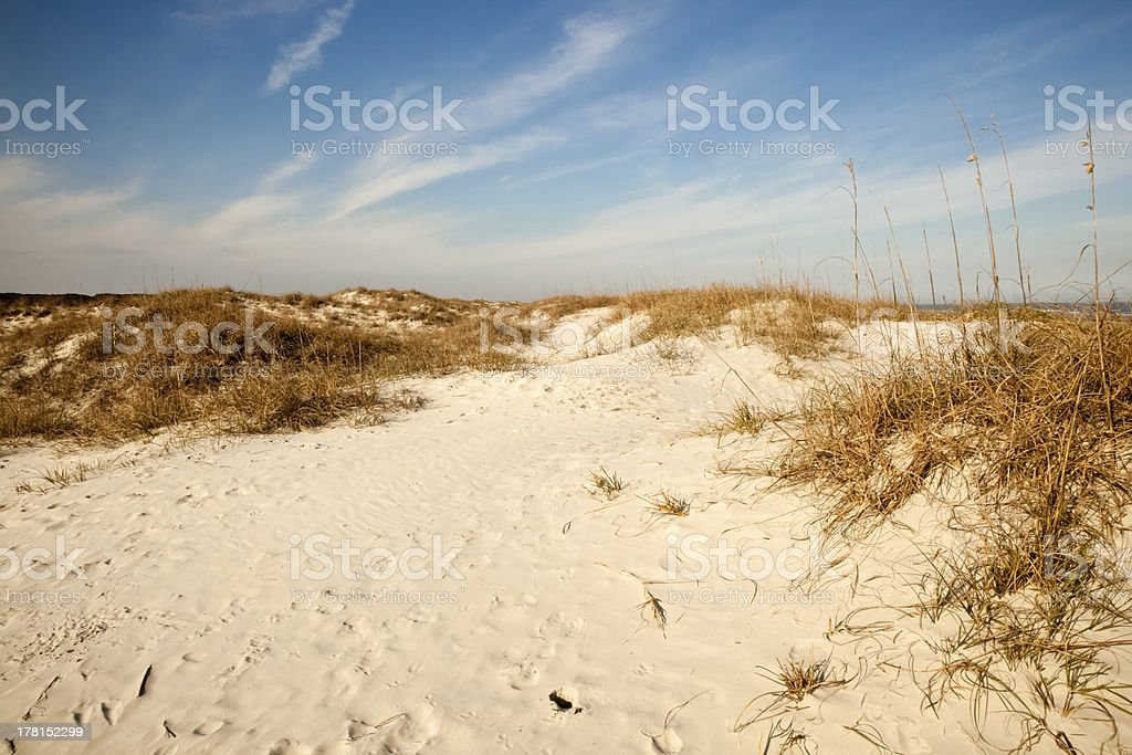 Dunes of Cumberland stock photo
