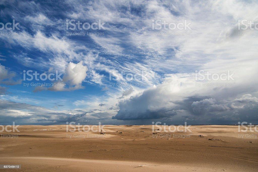 Dunes of El Fangar stock photo