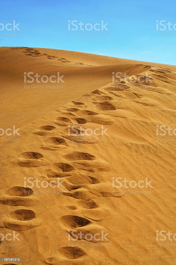 Dunes of Maspalomas, in Gran Canaria, Spain stock photo