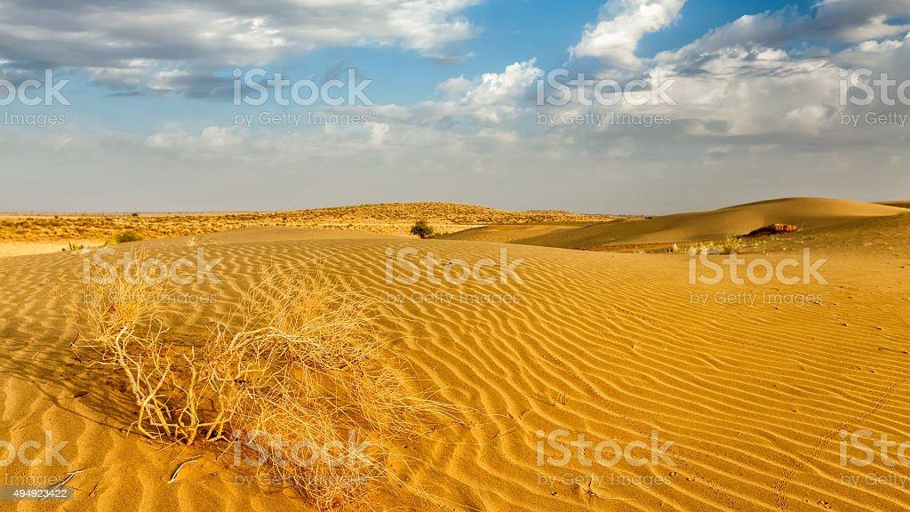Dunes of Thar Desert, Rajasthan, India stock photo