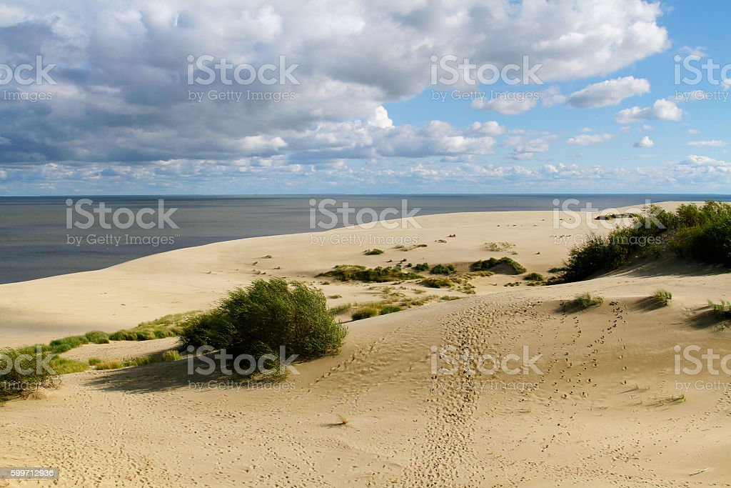 Dunes of the Curonian Spit stock photo