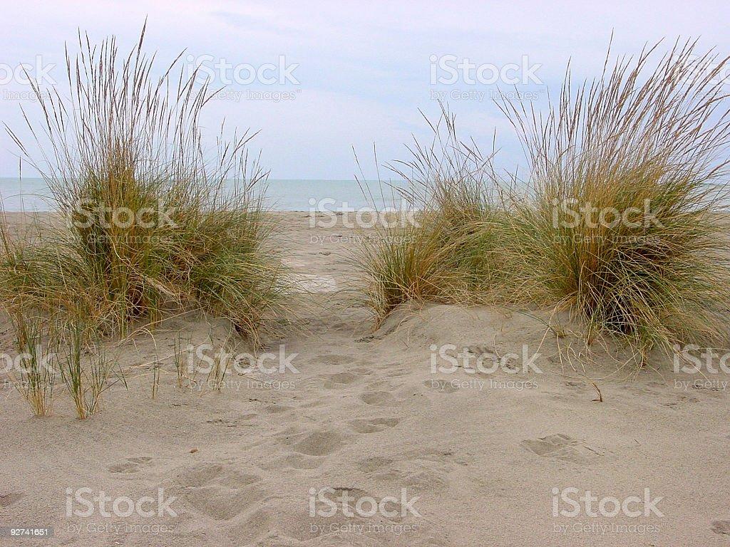 dunes royalty-free stock photo