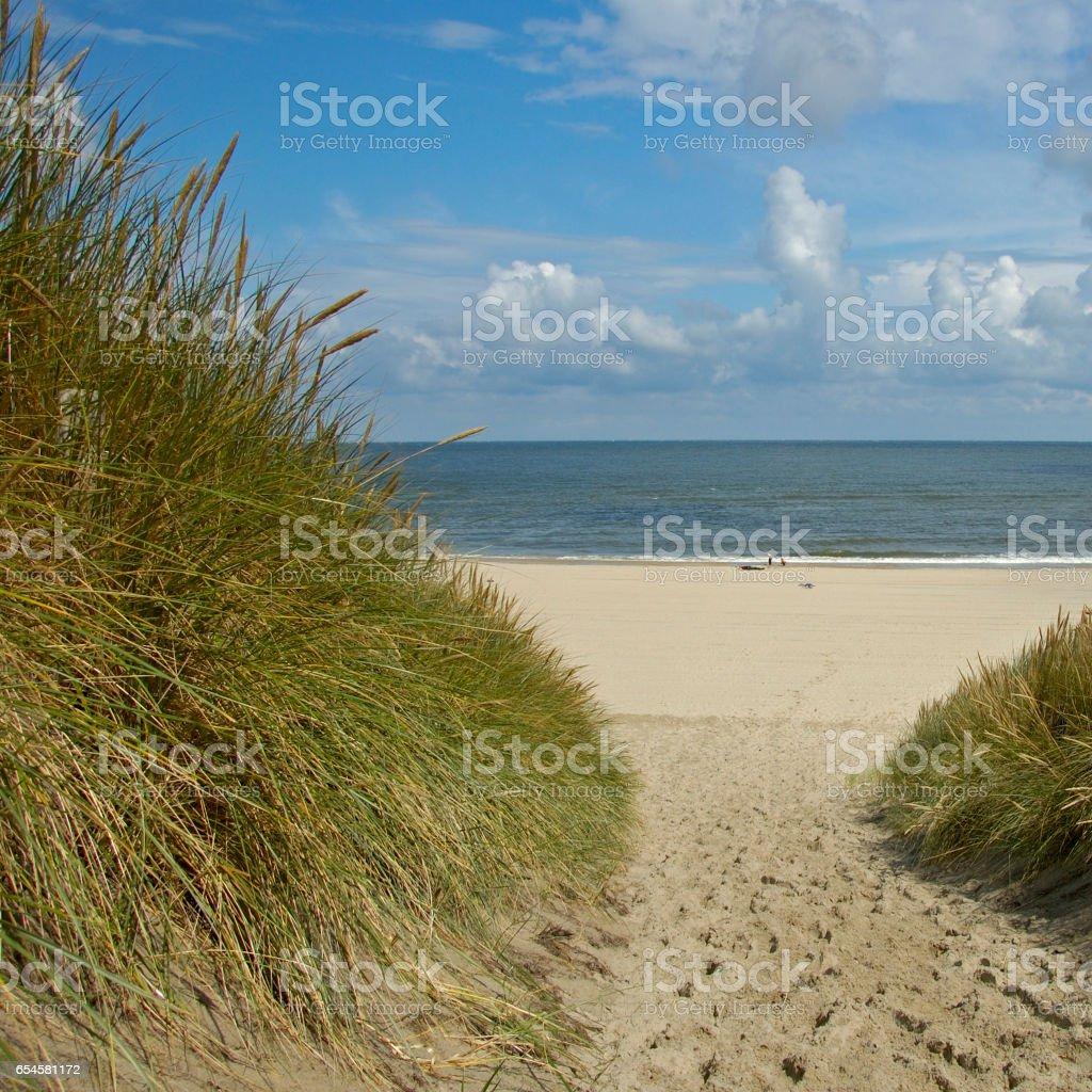 dunes, Vlieland the Netherlands stock photo