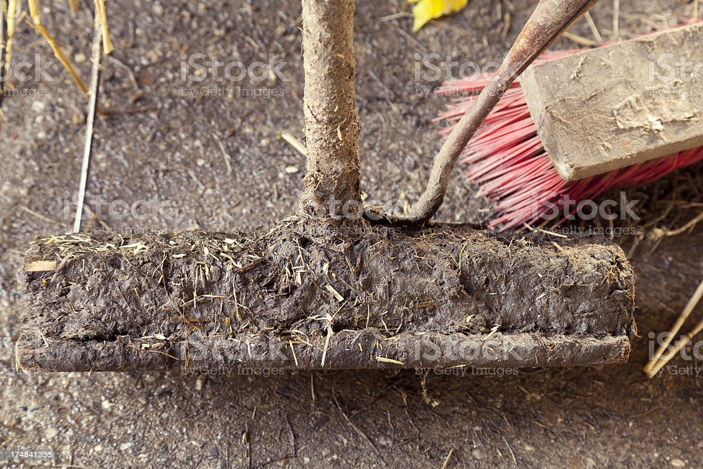 Dung tools royalty-free stock photo