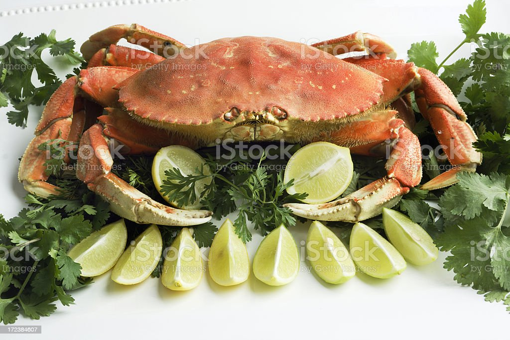 Dungeness Crab on Platter royalty-free stock photo