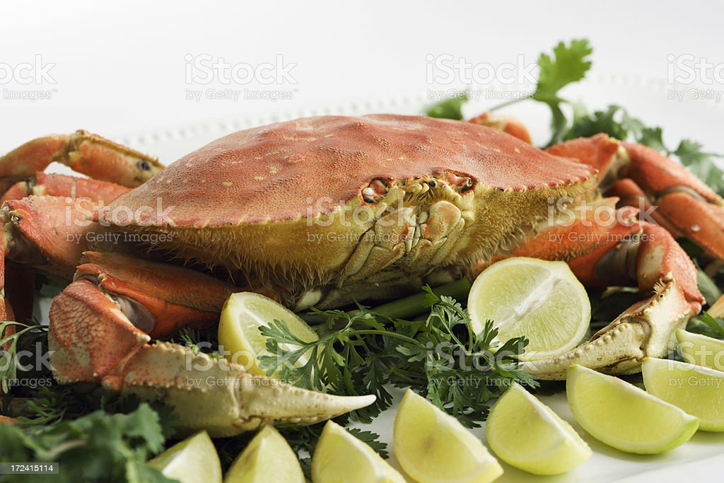 Dungeness Crab with Lemon royalty-free stock photo
