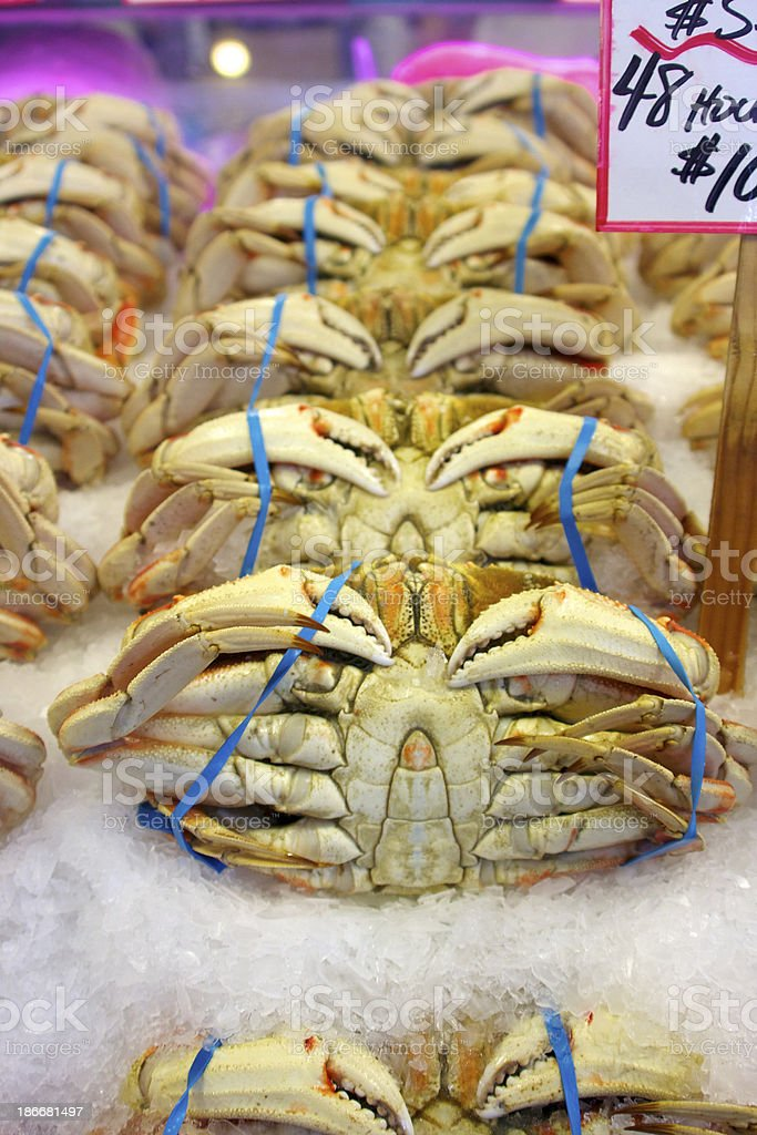 Dungeness Crabs for Sale royalty-free stock photo