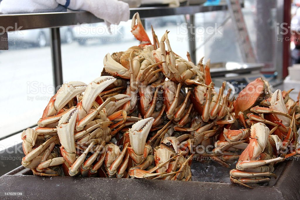 Dungeness Crabs on display at Fisherman's Wharf royalty-free stock photo