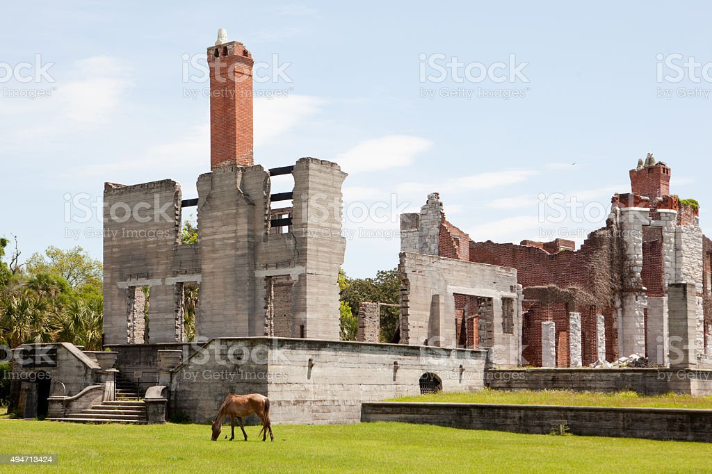 Dungeness Ruins on Cumberland Island in Georgia stock photo