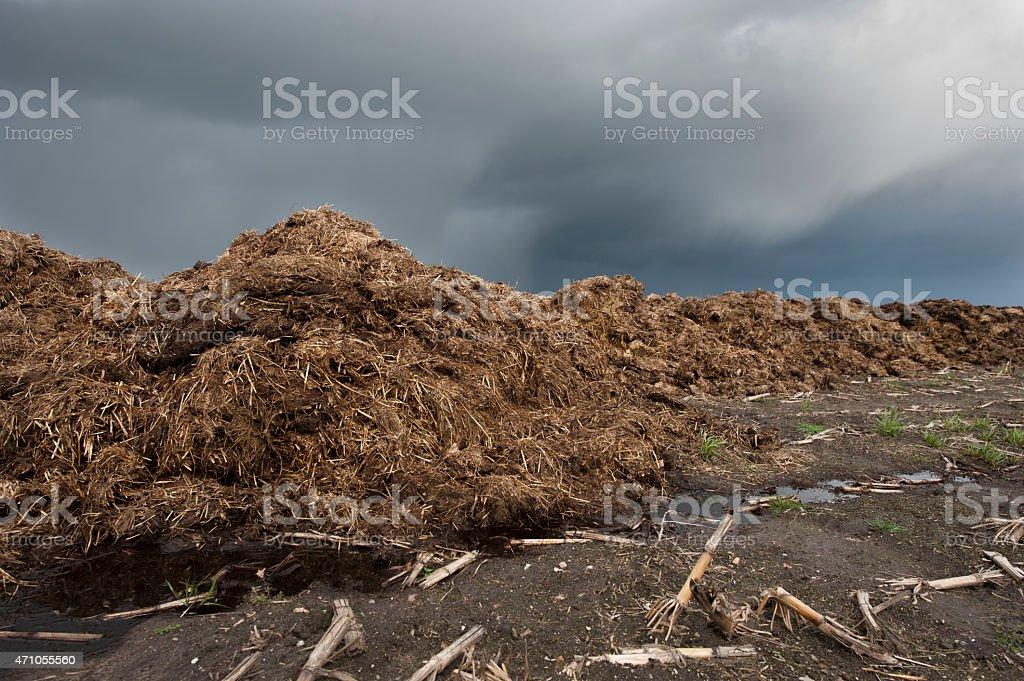 Dunghill - biofertilizer stock photo