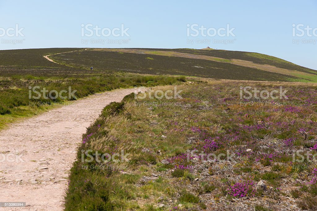 Dunkery Hill highest point on Exmoor near Minehead Somerset UK stock photo