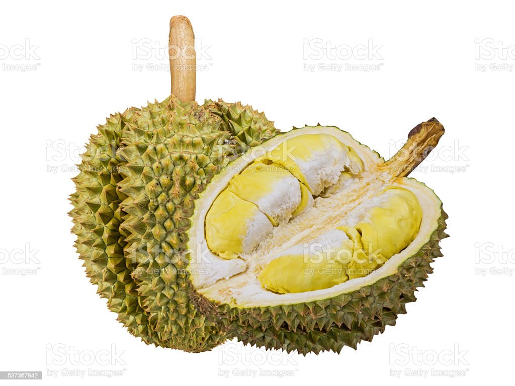 Durain fruit from Thailand stock photo