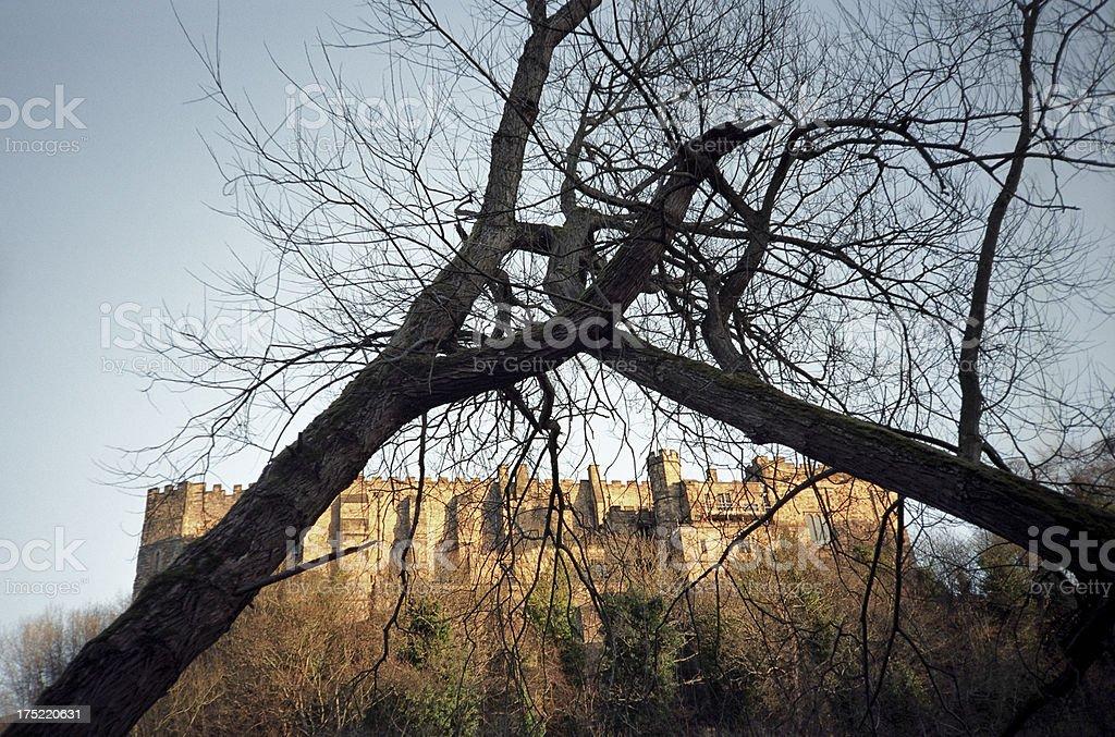 Durham castle behind crossing bare trees - English historic landmark royalty-free stock photo