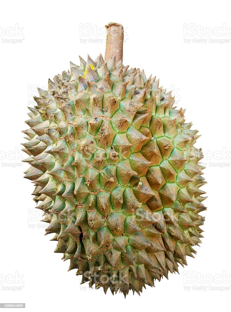 Durian dicut isolated on white backgroound stock photo