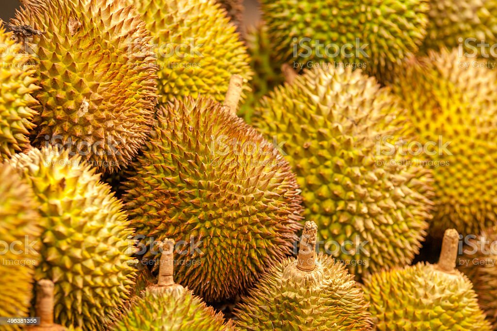 Durian from Davao, Philippines stock photo