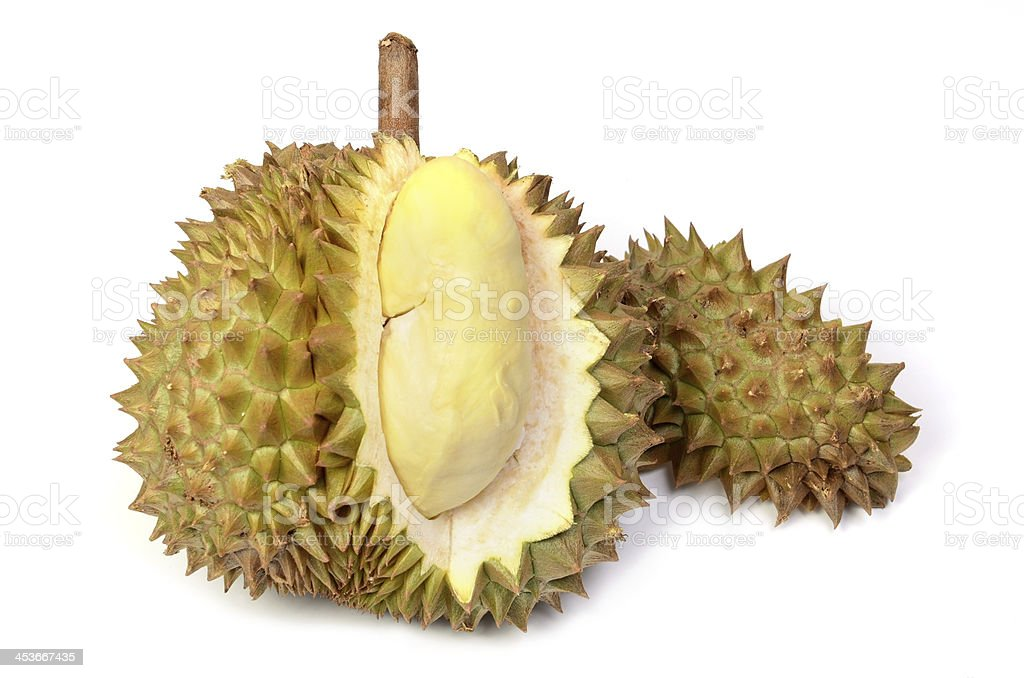 Durian fruit isolated on white backgrounds stock photo