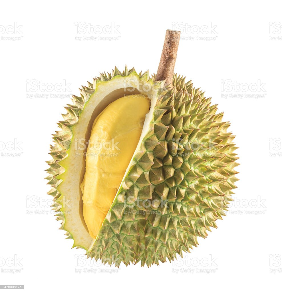 Durian fruit isolated stock photo