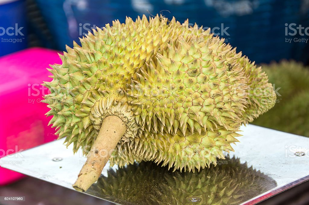 Durian in the market stock photo