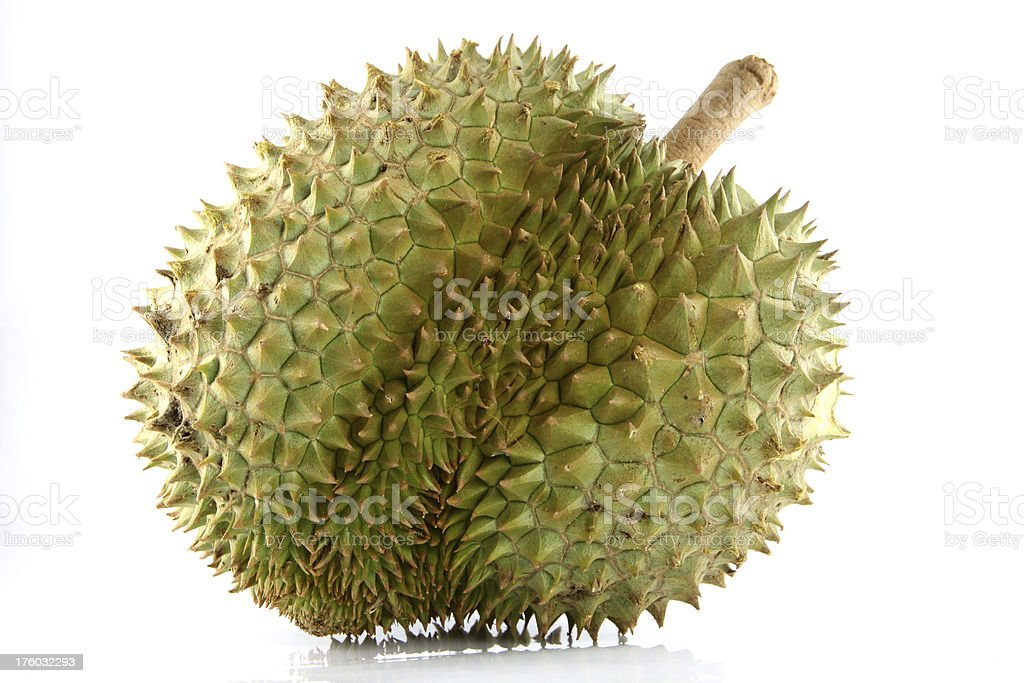 Durian on white Background. royalty-free stock photo