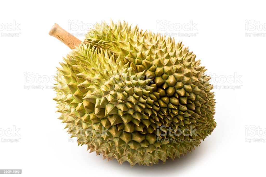 Durian on white background stock photo