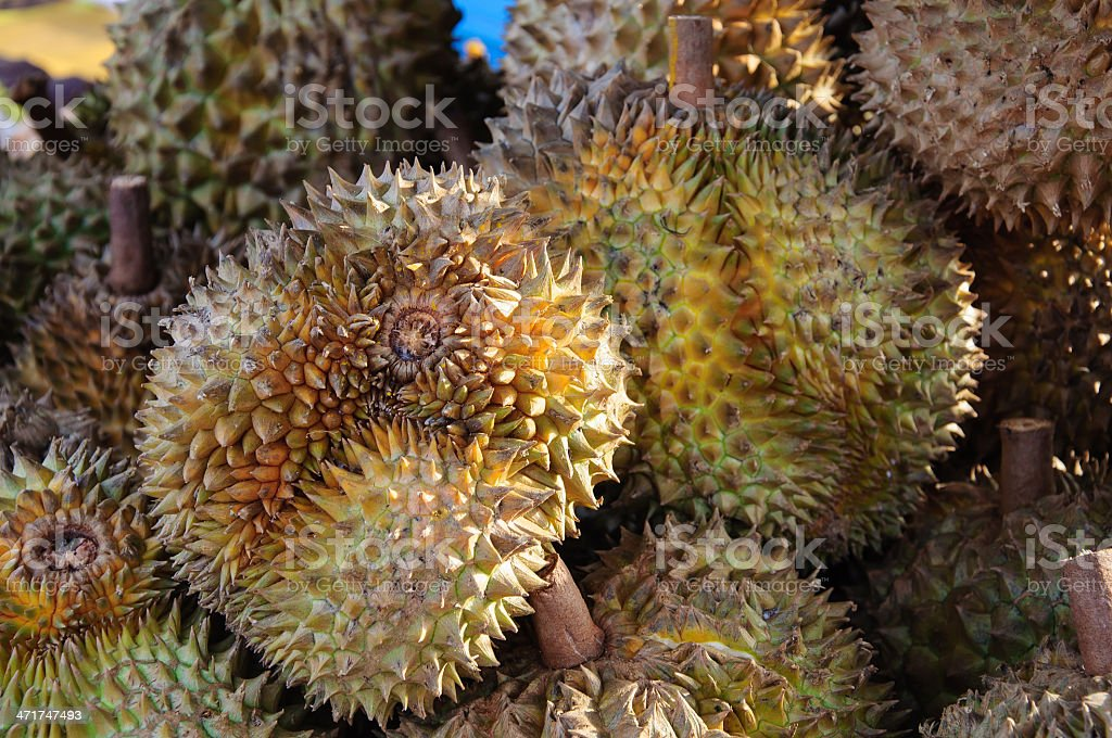 Durian royalty-free stock photo