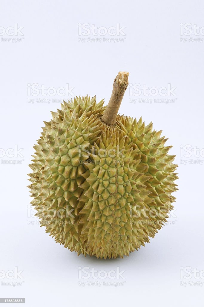 Durian Thai Fruit stock photo