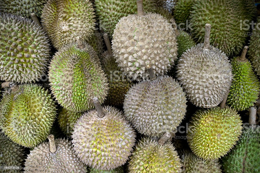 durian tropical fruit royalty-free stock photo