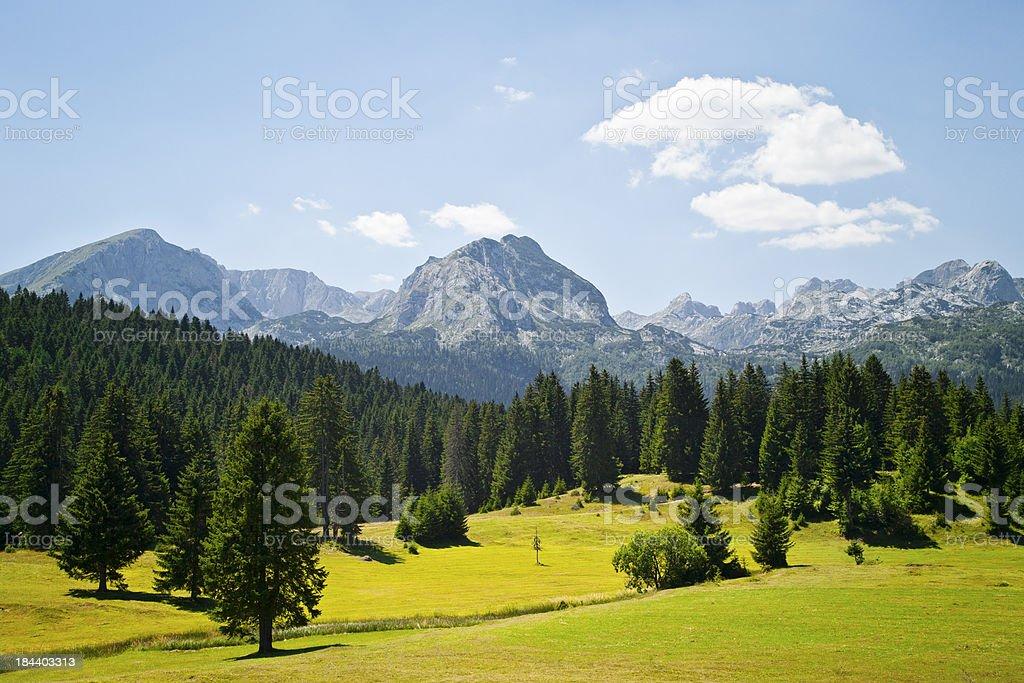 Durmitor massif, Montenegro royalty-free stock photo