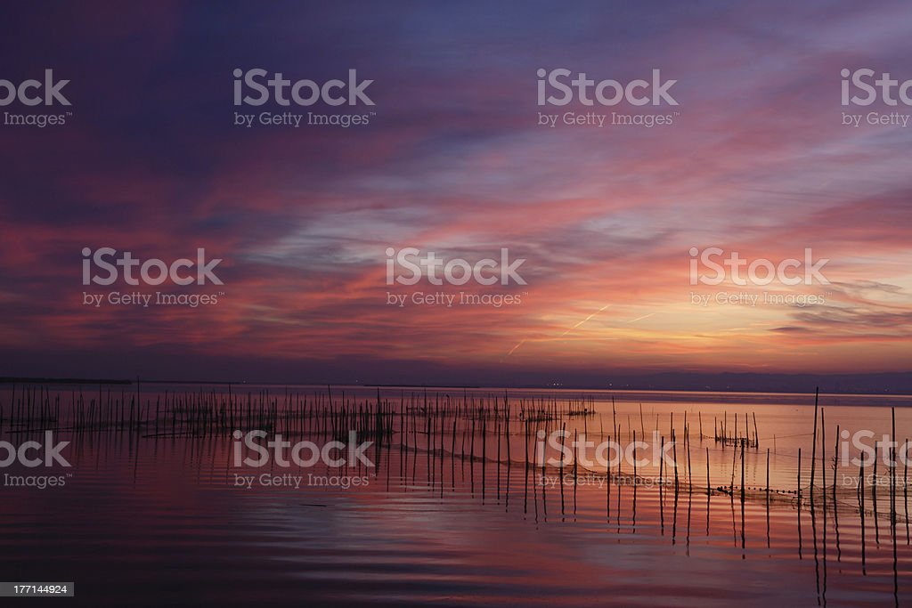 Dusk at the Albufera Natural Park royalty-free stock photo