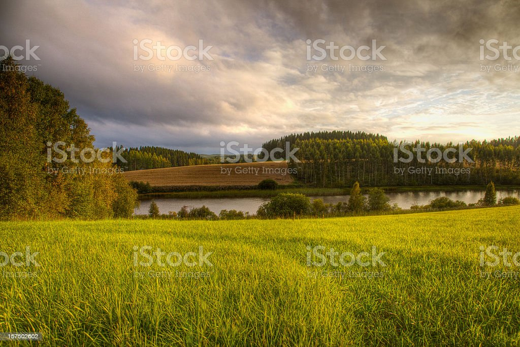 Dusk field by the river royalty-free stock photo