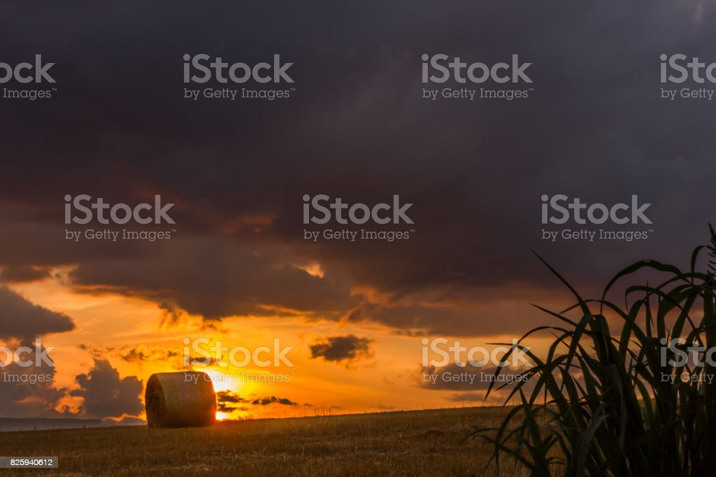 Dusk of Biei stock photo