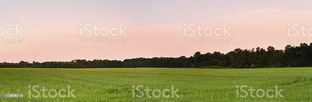 Dusk over green fields royalty-free stock photo
