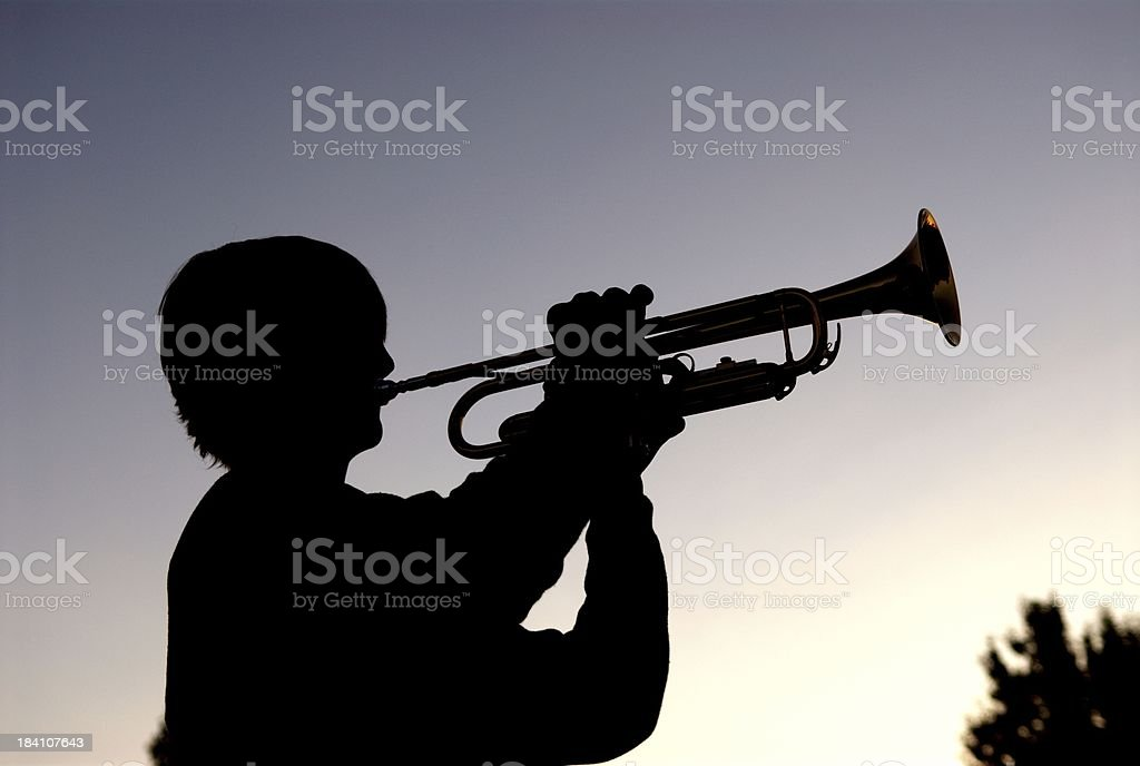 Dusk Trumpeter royalty-free stock photo