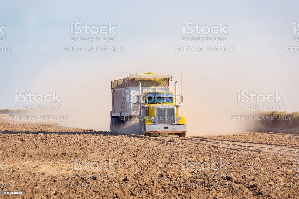 Dust bowl. Grain truck crossing cropped field with trail of dust. stock photo